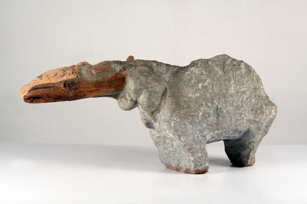 Tapir duży